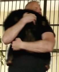 Chimp hugs rescuer