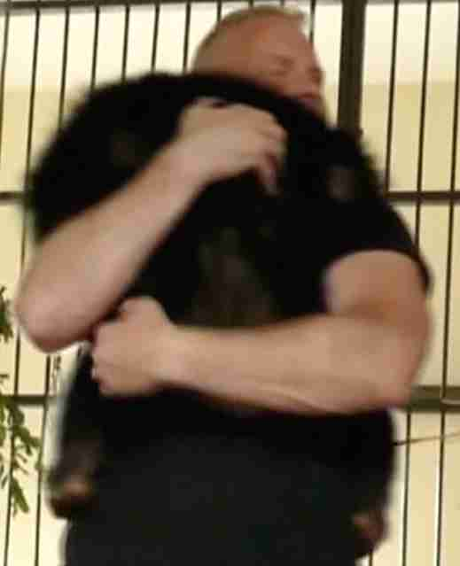 Chimp hugs rescuer