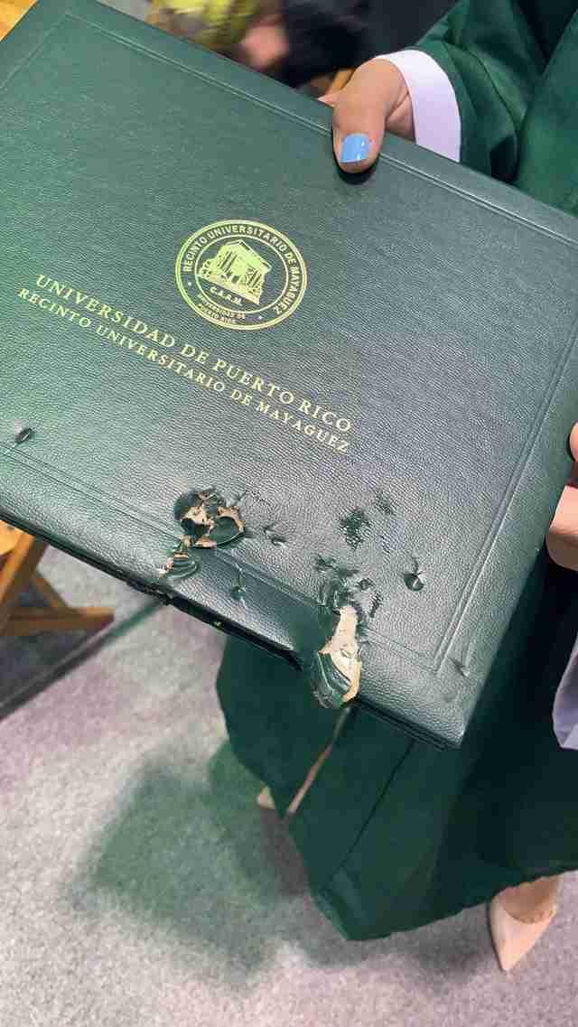 dog chewed diploma