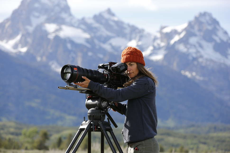 Yellowstone Live 2019: Inside National Geographic's Risky Nature Doc