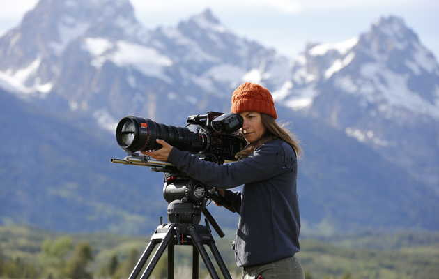 How 'Yellowstone Live,' the Riskiest TV Nature Documentary, Comes Together