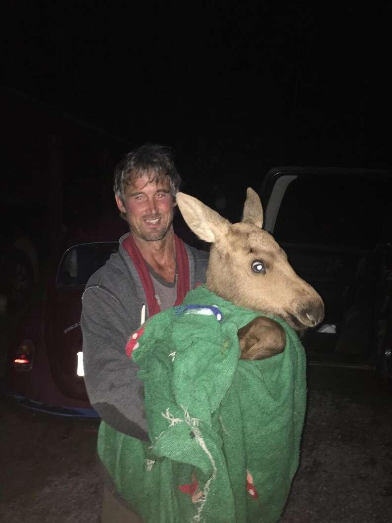 Man carrying baby moose