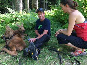 Baby moose orphans with family who rescued them