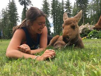 Moose with girl who helped save him