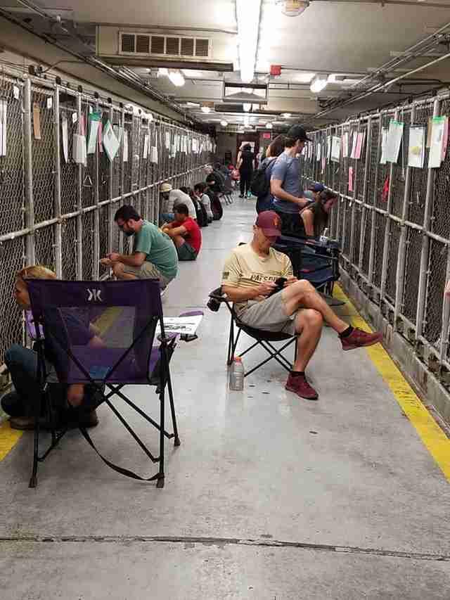 People comforting shelter dogs scared of July 4 fireworks