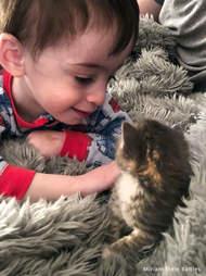 Little boy with foster kitten