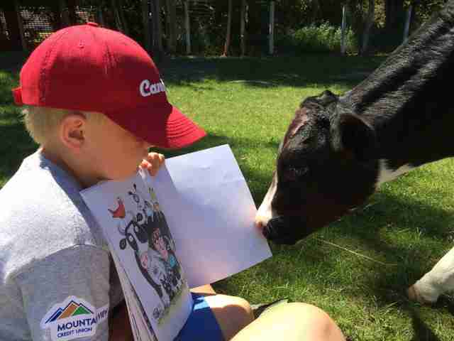 Little boy reading to a rescued baby cow at an animal sanctuary