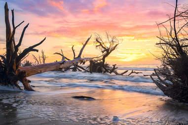edisto island botany bay bones beach