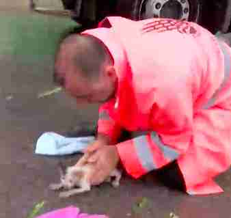 Road worker saves drowning kitten's life in Istanbul