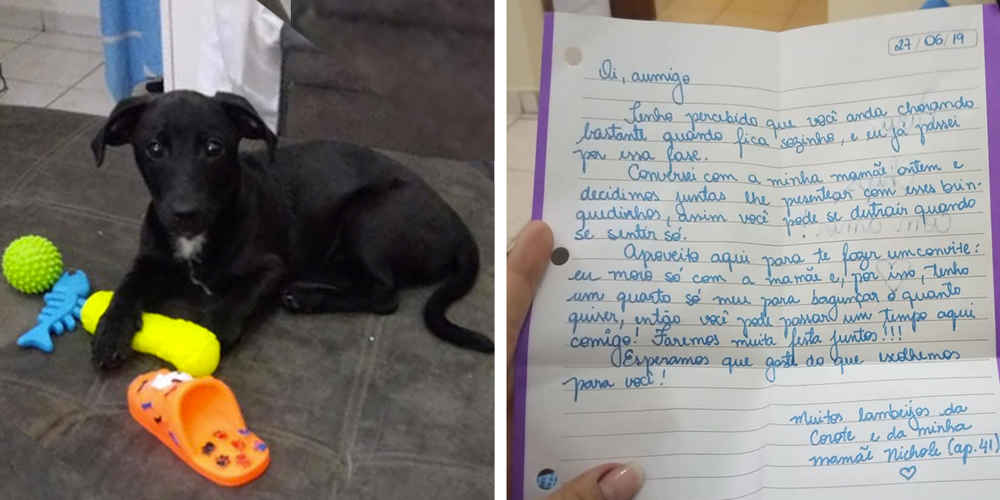 Woman Gets Letter From A Stranger — Then Sees It's Written To Her Dog