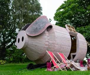 pig hotel