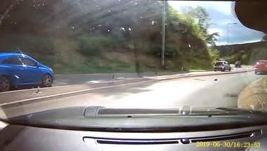 klitten on highway