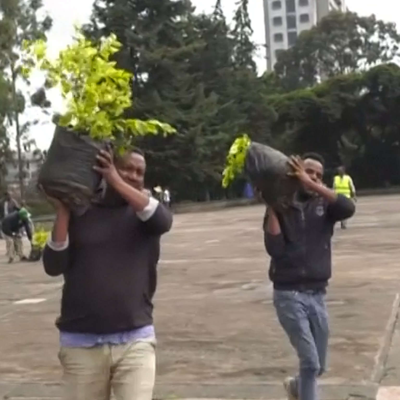 Engineers Partner with WIF to Develop Tree-Planting Drones