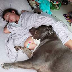 Pit bull won't sleep without his girl