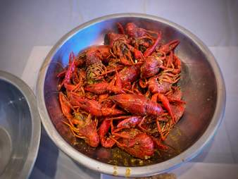 Viet cajun crawfish