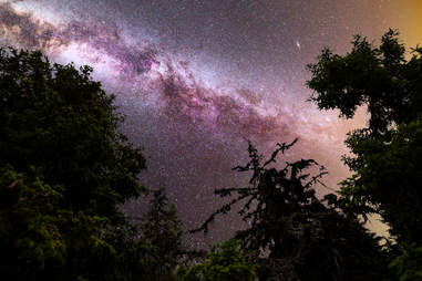 where to watch the perseids