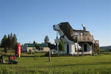 airbnb dog house
