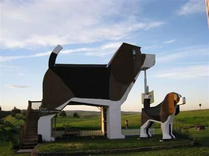 beagle airbnb