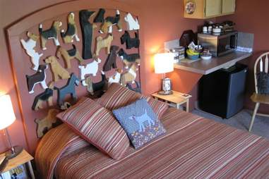 airbnb beagle house