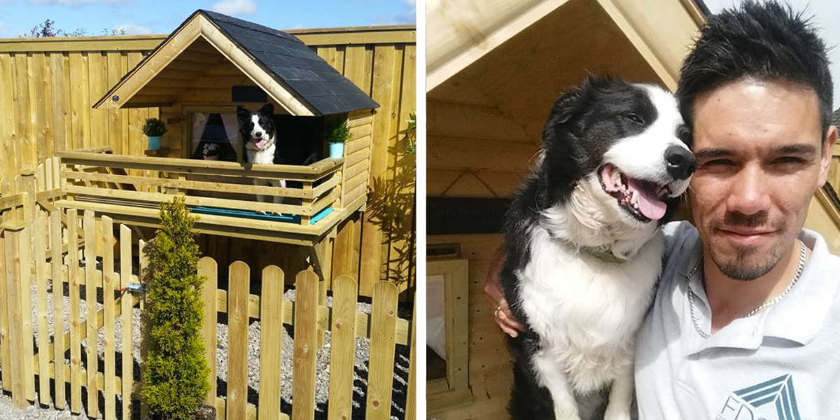 Guy Builds An Adorable Little Cabin In The Backyard For His Dog