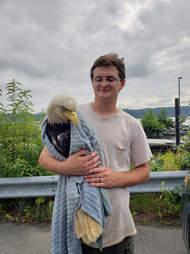 rescue eagle