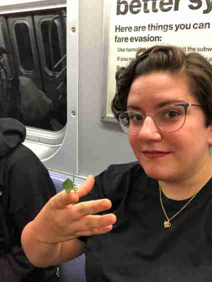 A New Yorker holds a katydid on the subway