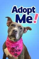 Adopt Me! cover art