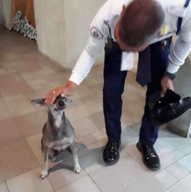 Security guard and his favorite dog Franci