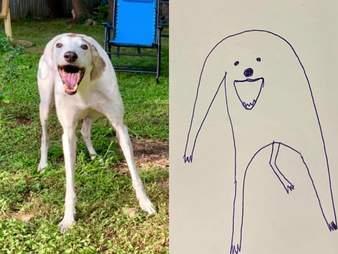 guy draws dog