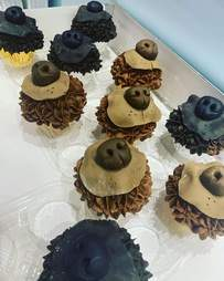 dog nose cupcakes