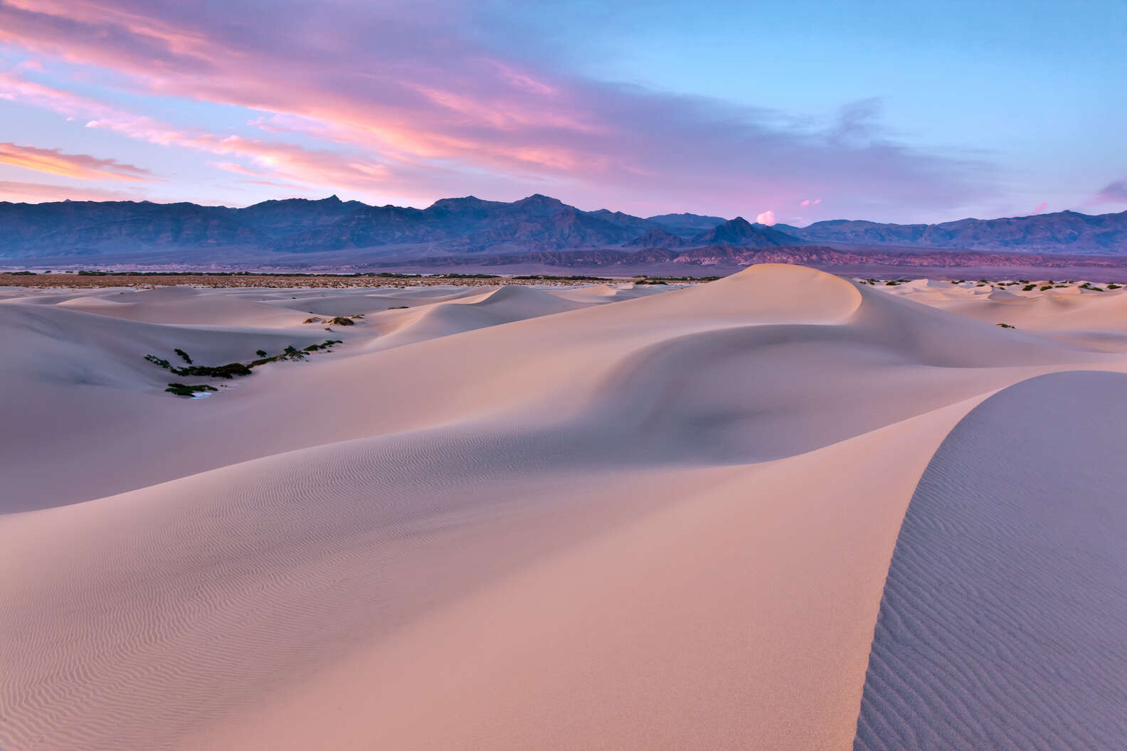 jared ropelato/Shutterstock