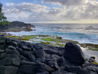 Tide pools in Hilo Hawaii