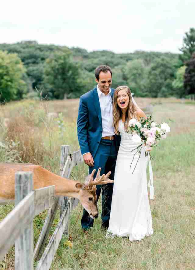 Deer photobombs Michigan couple's wedding photos