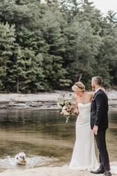 dog wedding photo shoot