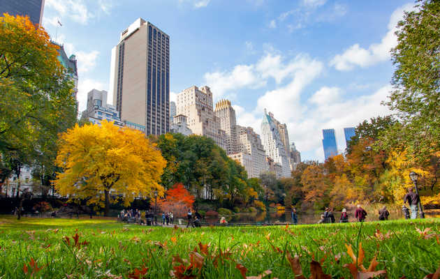 The Best Events to Check out in NYC This Fall