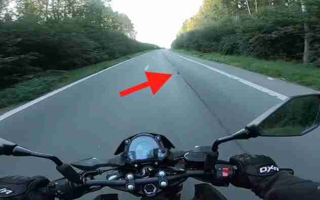 Hero Motorcyclist Stops Traffic To Rescue Kitten In Middle Of Road