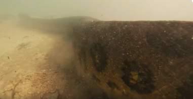 Diver films giant green anaconda in Brazil