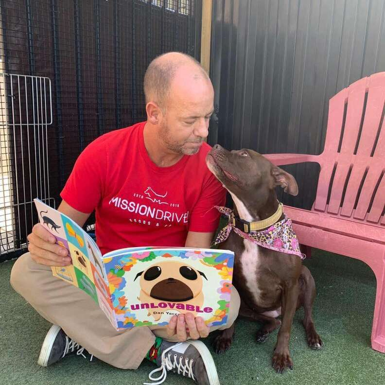 Man reading book to shelter dog