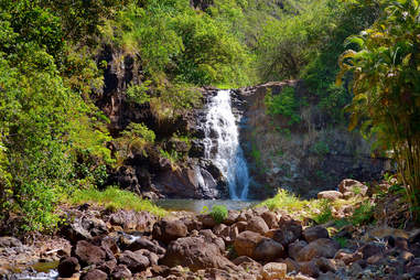 Waimea Valley park