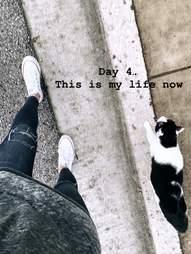 Cat following woman on street