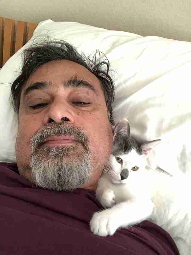 Cat snuggled against man's neck
