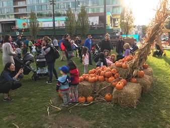 Gallagher Way Chicago pumpkin party