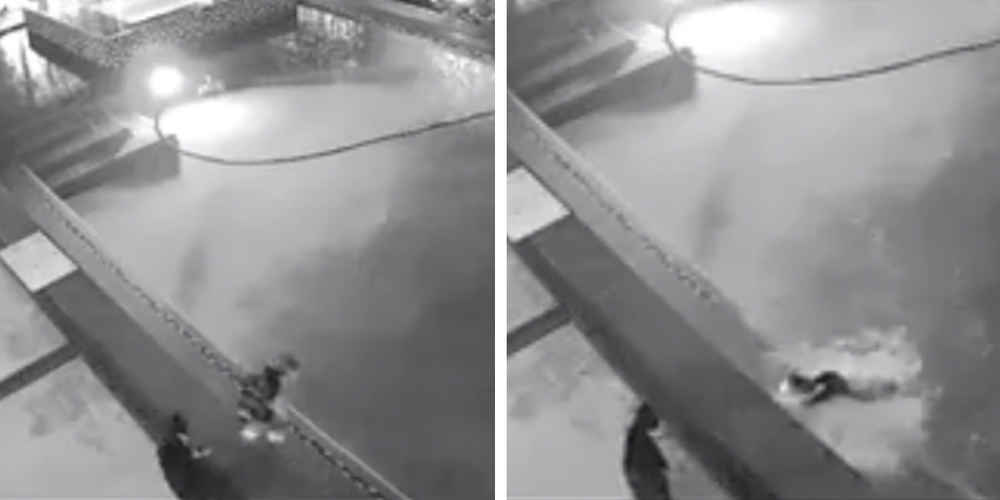 Security Camera Reveals The Real Reason Cat Came Inside Soaking Wet