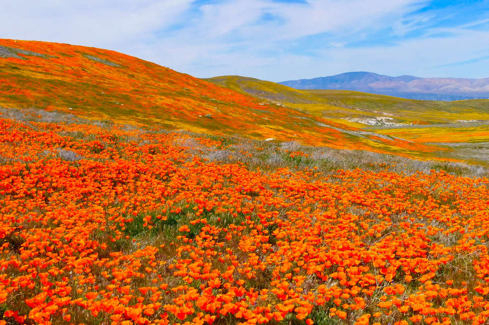 Most Beautiful Places to Visit in California: Road Trip ... on