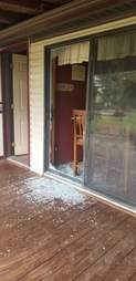 goat breaks into house