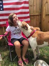 Dog licking the face of a little girl