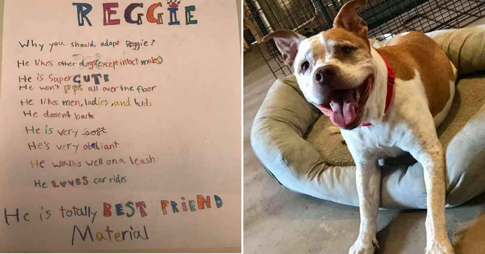 Little Girl Writes Adorable List Of Reasons Why Dog Should Be Adopted