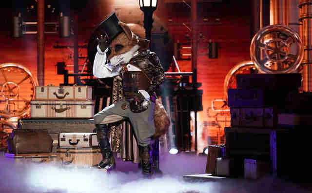 masked singer mr fox