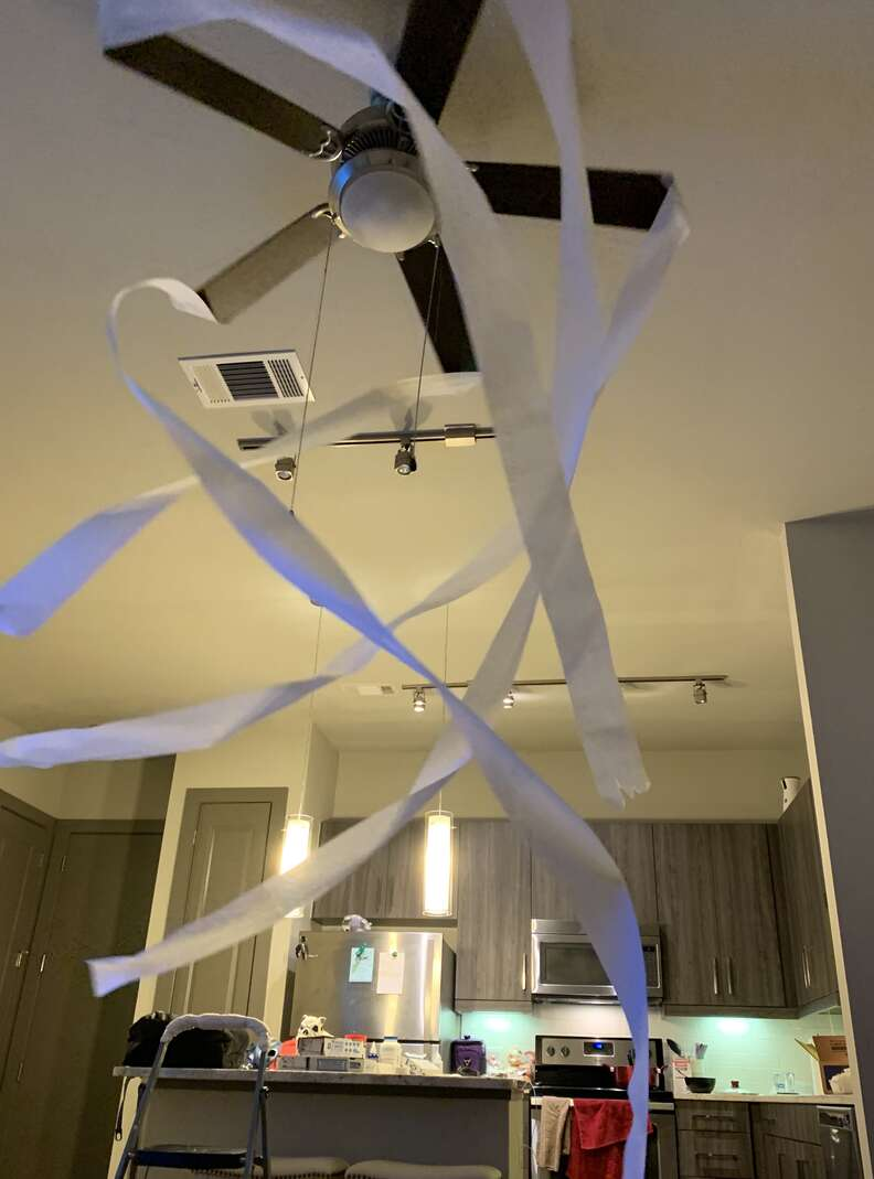 Toilet paper attached to fan blades for cat