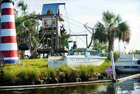 Discover Crystal River Florida